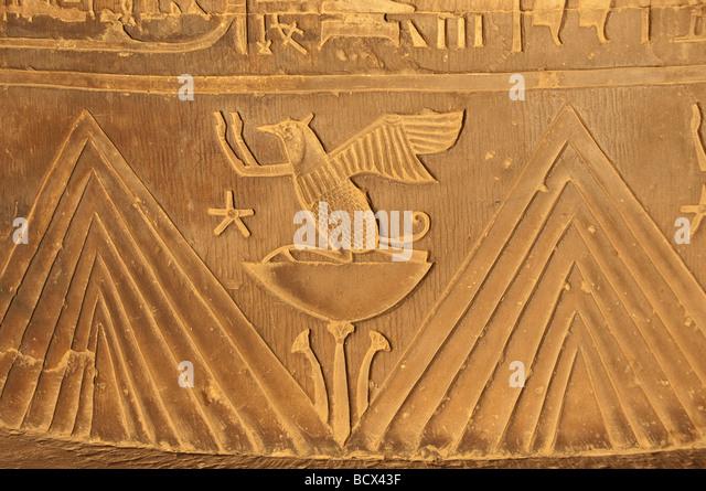 Egypt Kom Ombo temple wall carving reliefs lotus stars animal hieroglphs hieroglyphics - Stock Image