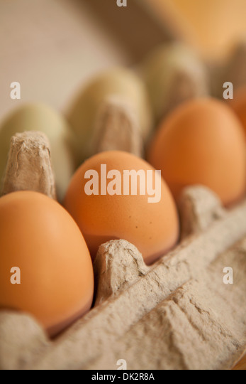 Close up of organic brown eggs in carton - Stock Image