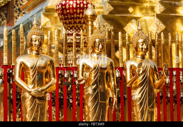 dominate bangkok escort gold