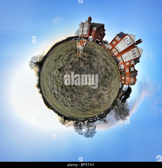 Beagle and houses with little planet effect - Stock Image