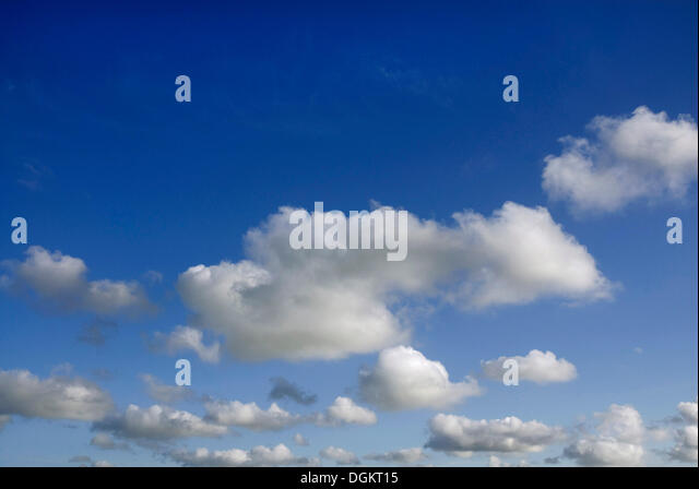 Cumulus clouds in the sky - Stock Image