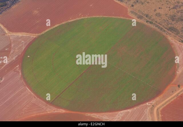 Zimbabwe Harare Province Harare agriculture through intensive irrigation - Stock Image
