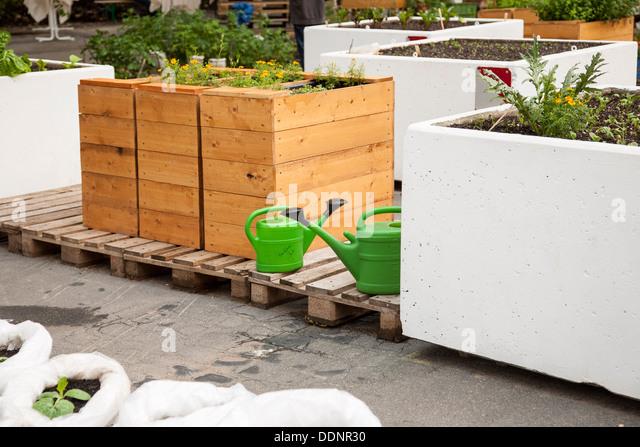 Urban Gardening, Frankfurt am Main, Hesse, Germany, Europe - Stock Image