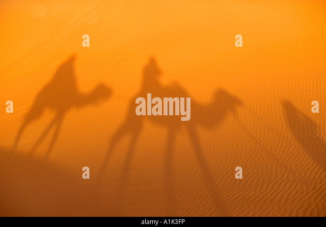 Shadows of camels and drivers in the sand of the Sahara Desert in Morocco - Stock Image