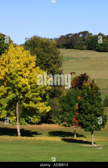 Stanmer Park Brighton Sussex towards the South Downs - Stock Image