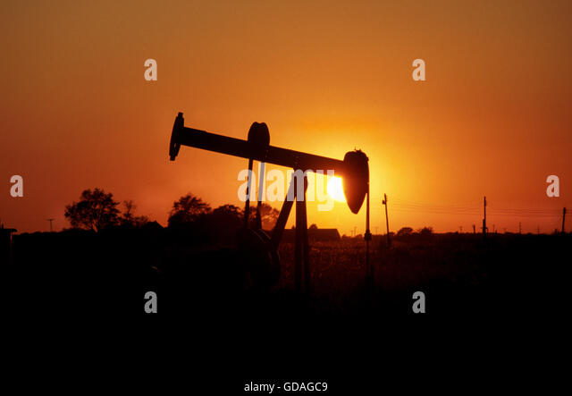 Island Oil Operation Long Beach Ca