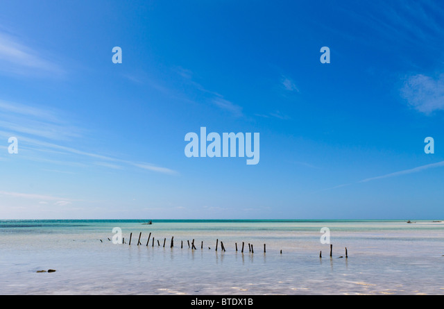 lonely beach - Stock Image