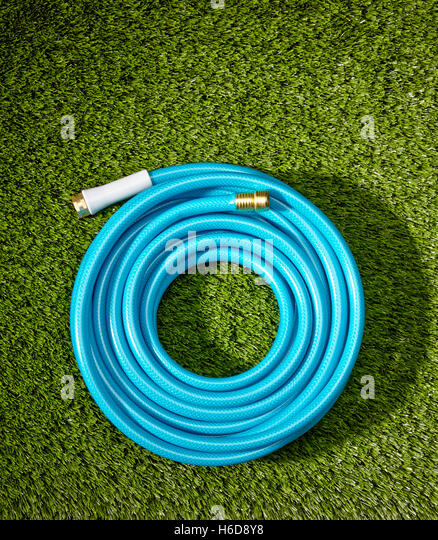 Coiled blue garden hose on turf. - Stock Image