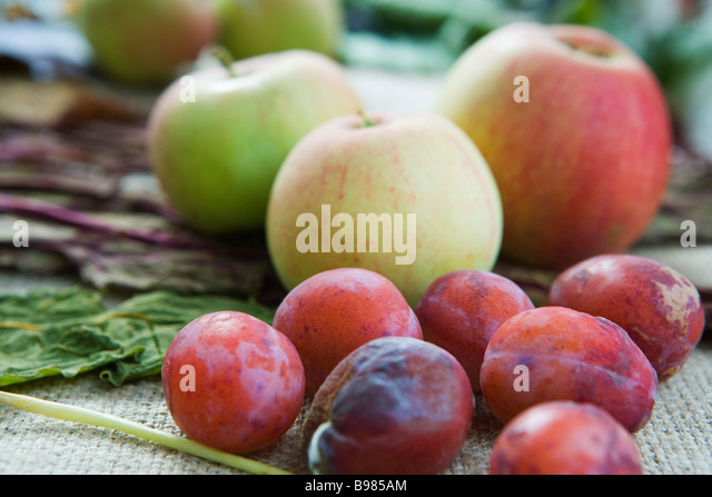 Plums and apples - Stock Image