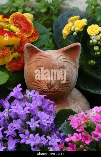 Terracotta Cat Planter Uk