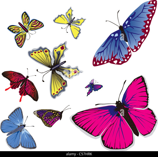 Vector illustration of many flying butterflys. - Stock Image