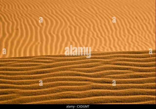 Sand in Kelso Dunes forms a golden horizon - Stock Image