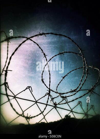 Tangle of barbed wire lining top of fence. - Stock Image