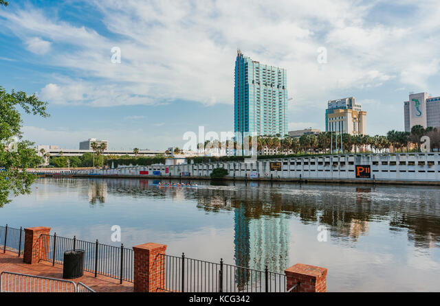 A rowing crew glide their boat up the Hillsborough River under the shadow of the Skypoint condominiums of Tampa, - Stock Image
