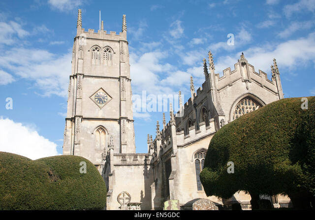 Western Yew Stock Photos Amp Western Yew Stock Images Alamy