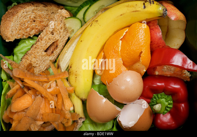 Kitchen food waste ready for composting, Suffolk, UK. - Stock Image