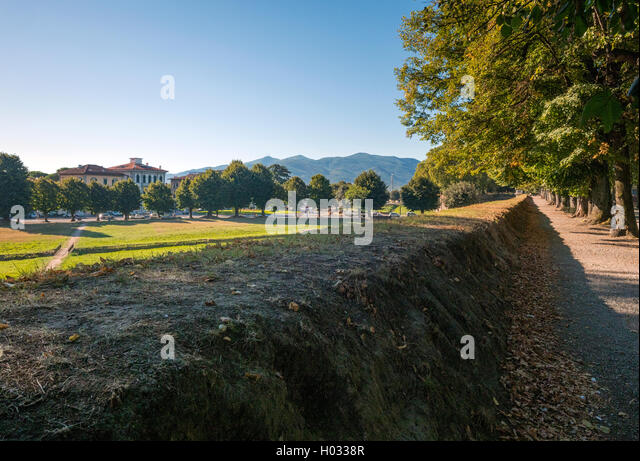 Tuscan countryside from the walls of Lucca, Tuscany, Italy - Stock Image