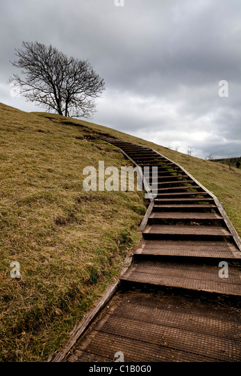 wooden steps giving easy access to the top od St Catherines Hill Winchester - Stock-Bilder