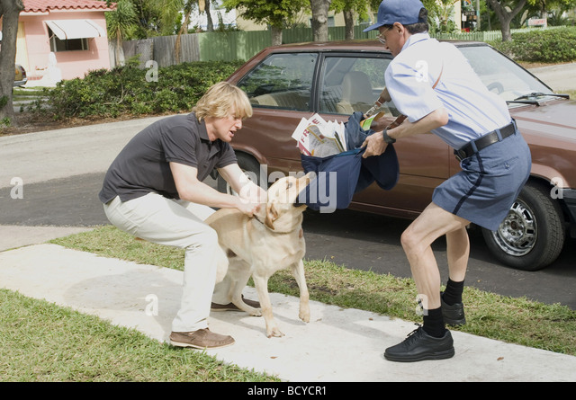 Marley and me Year : 2008 Director : David Frankel Owen Wilson, - Stock Image