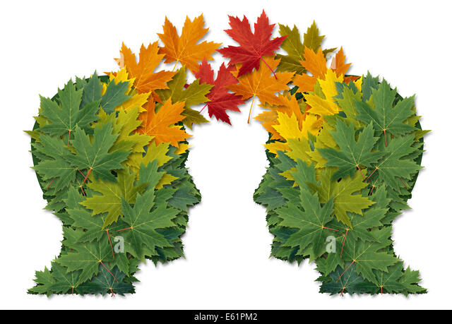 Communication exchange business partnership and teamwork symbol as two human heads made of tree leaves connected - Stock Image