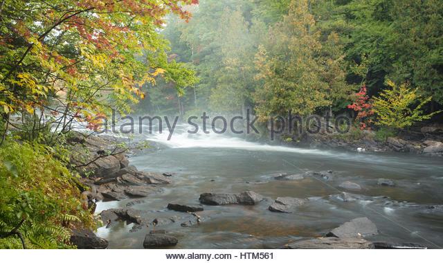 Autumn colours along the Oxtongue River, Oxtongue Rapids Park, Ontario, Canada - Stock-Bilder