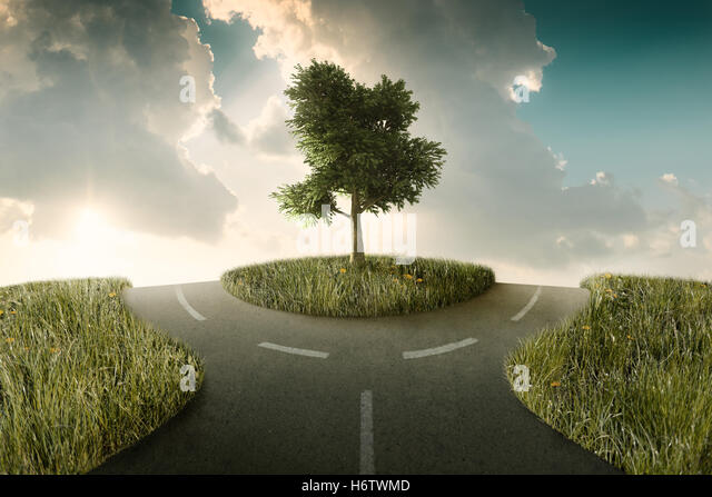 travel tree hill choose crossroad option road street travel tree hill sunset cloud direction choose rotary decision - Stock Image