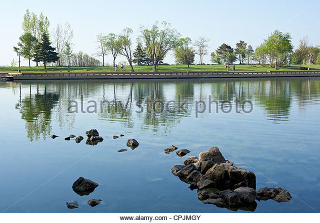 trees-reflected-in-the-lagoon-beside-the