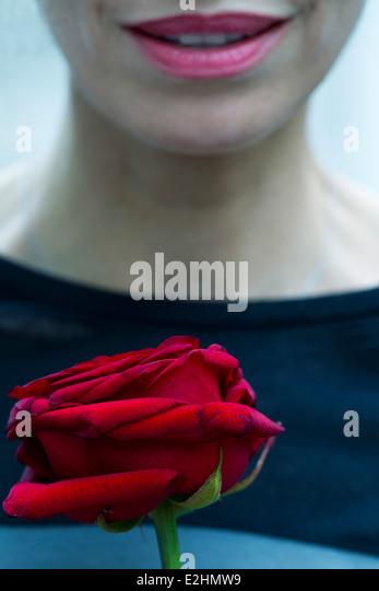 Woman holding single rose, cropped - Stock-Bilder