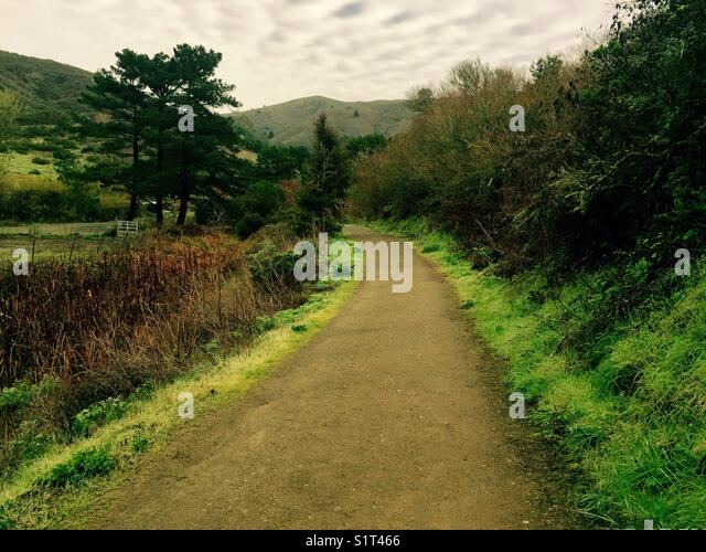 Country path - Stock Image