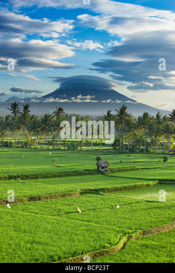 a dramatic sky over the volcanic peak of Gunung Agung and the rice fields, near Ubud, Bali, Indonesia - Stock Image