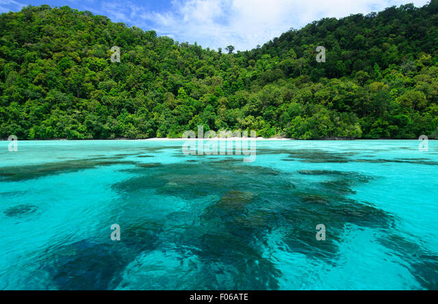 Green jungle meets a tropical sea, Mommon, West Papua, Indonesia, Pacific Ocean - Stock Image