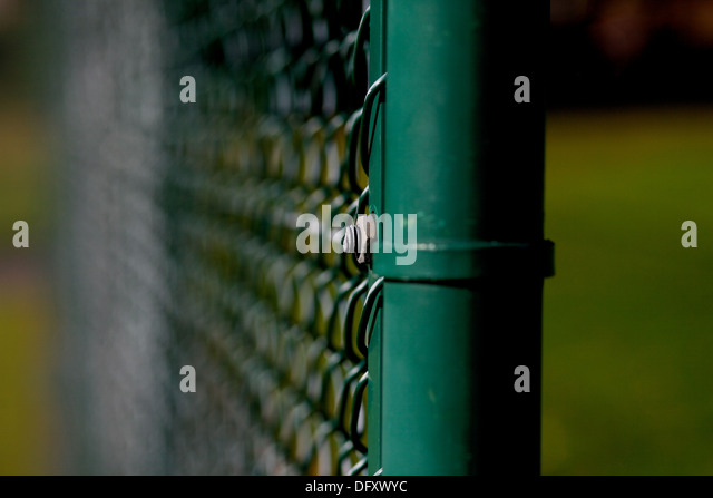 close up shot of wire fencing - Stock Image