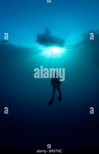 Silhouette of a scuba diver in Cuba - Stock Image