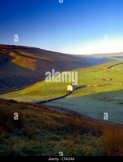 A stone barn and traditional drystone walls in Wharfedale in the Yorkshire Dales. - Stock Image