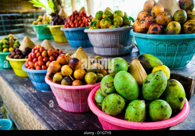 Exotic fruits at a tropical fruit farm, Bali, Indonesia, Southeast Asia, Asia - Stock Image