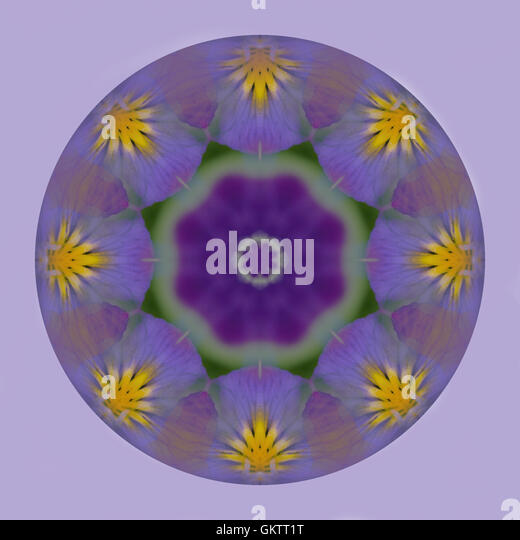 Circular kaleidoscope globe of purple pansy flower on a lilac backround in square format. Tileable for repeat pattern. - Stock Image