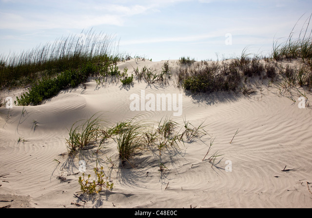 Beautiful sandy beach on Seabrook Island, near Charleston, South Carolina, USA - Stock Image