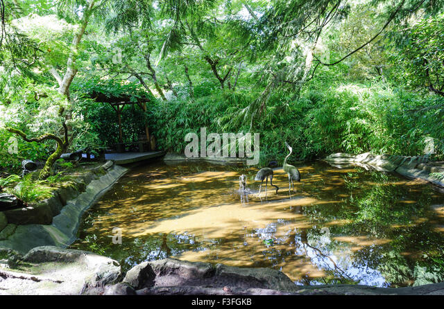 Central Saanich Stock Photos Central Saanich Stock Images Alamy