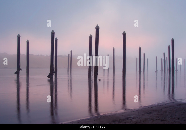 Coastal harbor pilings in colorful moody sunrise fog - Stock Image