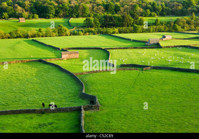 Gunnerside, Swaledale, Yorkshire Dales National Park, UK - Stock-Bilder