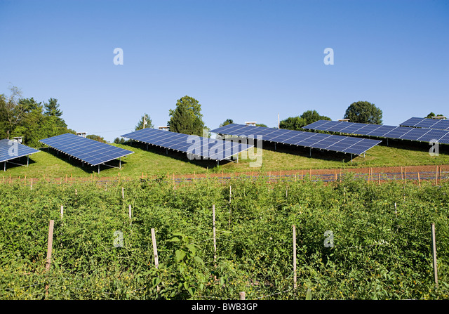 Solar panels in field, Pennsylvania - Stock Image