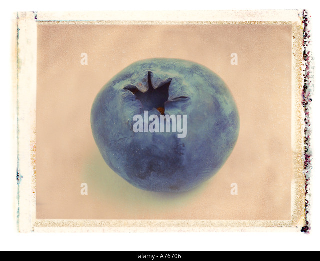 blueberry close up polaroid transfer - Stock Image