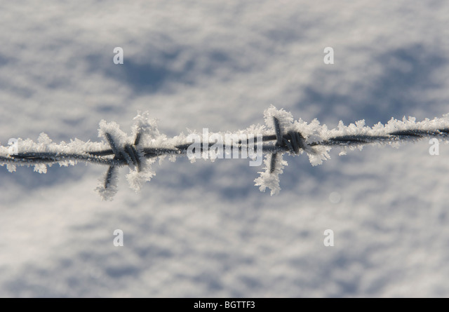 2010 extreme winter conditions barbed wire fencing - Stock Image