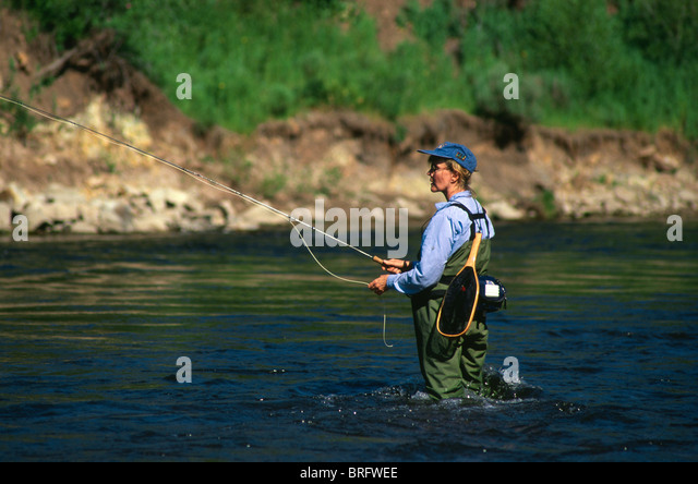 Fly fishing stock photos fly fishing stock images alamy for Fishing colorado springs