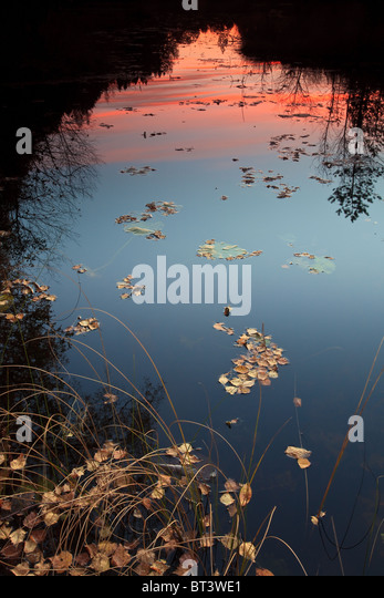 Colorful evening skies reflected in the lake Botnertjernet at Larkollen in Rygge kommune, Østfold fylke, Norway. - Stock-Bilder