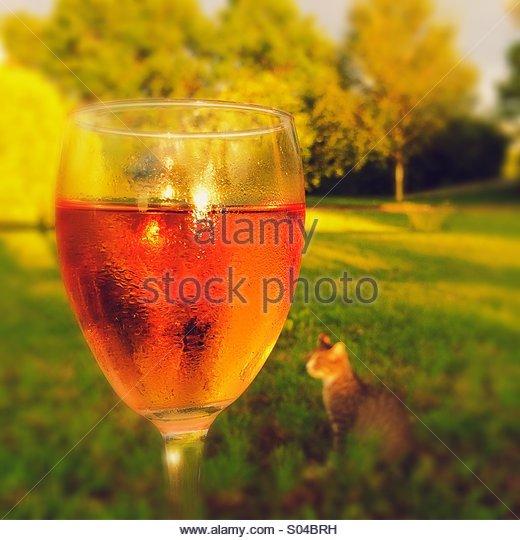 Rose Wine or Kir in the Garden - Stock Image