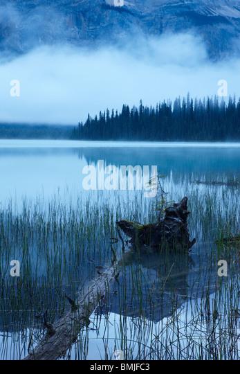 Emerald Lake at dawn, Yoho National Park, British Columbia, Canada - Stock Image