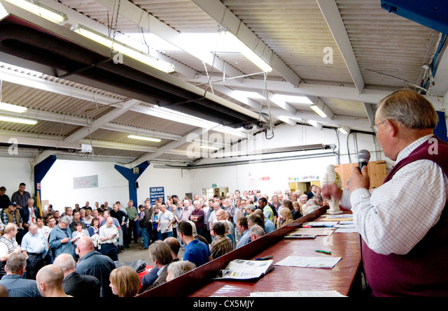 car auction auctioneer second hand cars sales bid bidding auctioneers - Stock Image