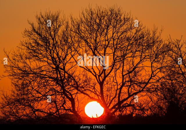 Cardiff, Wales, UK. 6th February, 2015. UK Weather: The sun sets in North Cardiff tonight after a cold day. The - Stock Image