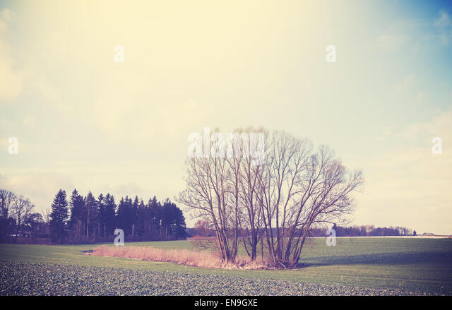 Vintage toned peaceful rural landscape with vignette effect. - Stock Image